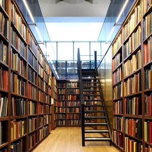 Библиотеки Осинников