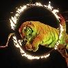 Цирки в Осинниках